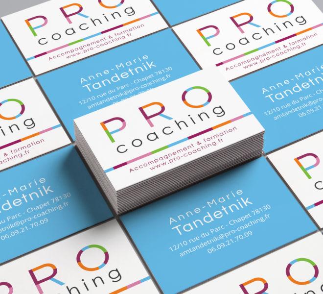 alezpc-carte-de-visite-pro-coaching